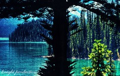 Let's go camping (... Knight Production ...) Tags: blue trees light lake reflection me water beautiful river out landscape outside photo scenery view image outdoor scenic picture cable knight production outandabout waterreflection cammping letsgocamping knightprouduction cableknight
