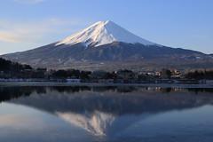 Inverted image of Fujisan (fosa.) Tags: mountain lake reflection japan mountfuji fujisan inverted mtfuji invertedimage lakekawaguchi invertedimageoffujisan