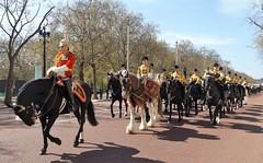 band of the household cavalry-freedom of the city of london /20/04/2016/ (philipbisset275) Tags: unitedkingdom centrallondon englandgreatbritain themallcityofwestminster bandofthehouseholdcavary 20042016 freedomofthecityoflondonparade