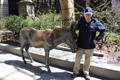 IMG_3251 (jimward85) Tags: boston donkey freedomtrail democrat opposition oldcityhall