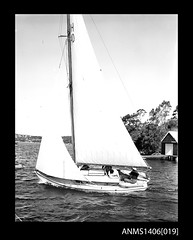 Yacht underway, seen from portside, with a five person crew. (Australian National Maritime Museum on The Commons) Tags: vintage sailing yacht sydney 1940s 1950s sail 1960s yachts sailingboat australiannationalmaritimemuseum sailingvessel commercialphotographer gervaispurcell leighpurcell