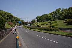DSC00188 (koyaman3422) Tags: nikon sony 28mm harajuku