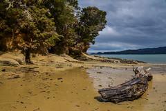 Abel Tasman - 09 (coopertje) Tags: ocean park newzealand beach coast national southisland abel tasman nieuwzeeland