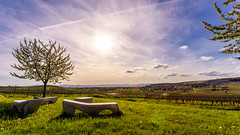 Spring at Kaiserstuhl (Che Camera) Tags: sun art backlight de landscape deutschland vineyard spring wine kunst landschaft sonne kaiserstuhl frhling weinberg gegenlicht burkheim badenwrttemberg vogtsburg oberrotweil sonyalpha7 ef1740f40 vogtsburgimkaiserstuhl teamsony ilce7