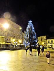 Arbol_IMG_9740 (darioalvarez) Tags: espaa 20d de navidad noche europa galicia 20 plazamayor electoral tarde diciembre anochecer ourense celanova 2015 rboldenavidad