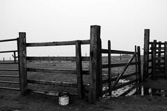 Mountain Gate (Thomas Pollock) Tags: white mountain man black monochrome landscape gate exploring grain sigma explore isle rugged merrill foveon iom dp2 snaefell