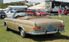 Mercedes-Benz 250SE Cabriolet (W111) (RudeDude2140a) Tags: classic car beige convertible mercedesbenz cabriolet w111 250se