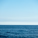 One Perfect Sea (nosha) Tags: ocean sea usa beautiful beauty island hawaii newyear tropical 2016 nosha oneperfectsea