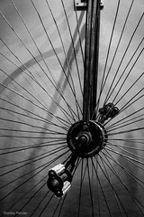 Shifting Gears Exhibit: Appleton WI (_Sharkey_) Tags: art bicycle museum exploring bikes exhibit wi appleton linescurves january2016 bwcritiquegroup copyrightsharkeyplender2016 shiftinggearsexhibit