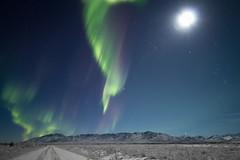 Moonlight and ribbons (Explored) (frostnip907) Tags: blue winter sky moon white snow green ice alaska night purple aurora nightsky tundra northernlights auroraborealis taiga auroras canon7d rokinon14mmf28
