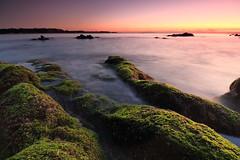 Sunset (appi U) Tags: longexposure seascape japan coast rocks  kanagawa