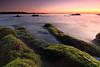 Sunset (appi U) Tags: longexposure seascape japan coast rocks 日本 kanagawa 岩 夕景 海岸 海 神奈川 磯