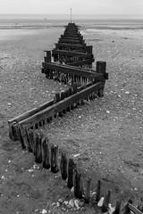 Zig-zag Groynes (scarlet-pimp) Tags: blackandwhite bw beach vanishingpoint decay norfolk perspective wideangle barrier lowtide groyne zigzag hunstanton tidalbarrier newhunstanton canon7d kingslynnandwestnorfolk