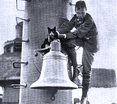Mr. Riley, the USS Texas' mascot being 'rescued' by the Capt.'s son - 1899 (SSAVE w/ over 5 MILLION views THX) Tags: spanishamericanwar usstexas 1899 shipscat mrriley barrettphilip