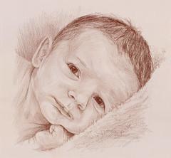 Sam (Linda Vanysacker - Van den Mooter) Tags: portrait baby art pencil sketch child drawing dessin newborn crayon portret bb croquis sanguine tekening 2016 schets potlood vanysacker visiblytalented vandenmooter lindavanysackervandenmooter lindavandenmooter