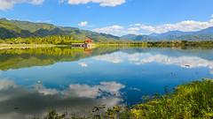 美濃中正湖水庫 Meinong, Zhongzheng Lake
