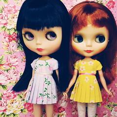 hana and siobhan