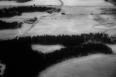 Art of Agriculture (paulius.malinovskis) Tags: road above winter snow art field contrast forest flying amazing sweden sony ground newyear descend agriculture scandinavia 2016 cultivate upintheair