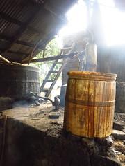 IMG_7940 (alexandre.vingtier) Tags: haiti cap rum nord rhum haitien clairin