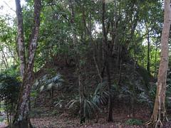 """Tikal: une pyramide qui n'a pas encore été déterrée <a style=""""margin-left:10px; font-size:0.8em;"""" href=""""http://www.flickr.com/photos/127723101@N04/25635858513/"""" target=""""_blank"""">@flickr</a>"""