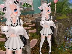 parfait (Yukiterudiary) Tags: anime kitty lolita kawaii neko hd m3 parfait tsg gutz tjr kemono halfdeer