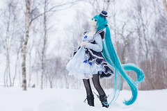 it falls in silence (NOZOMUN_SHBVD) Tags: winter snow toys sigma30mmf14dc dd volks   x5 hatsune miku  dollfiedream bfigure jfigure  hatsunemiku   dd tateshinasecondfarm