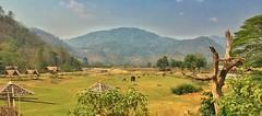 The great elephant plains of Chiang Mai (simoncbrown1) Tags: mountains river thailand safari valley chiangmai elephants plains sweeping