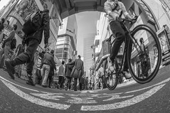 STOP LINE (ajpscs) Tags: street people blackandwhite bw blancoynegro monochrome bike bicycle electric japan japanese tokyo town blackwhite nikon outdoor streetphotography monochromatic  nippon  akihabara blkwht grayscale akiba shitamachi fisheyelens  d300 105mm   monokuro ajpscs akihabaraelectrictown