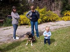 Pauline, Hlne, Jules et Alfred (Dahrth) Tags: dog chien baby grass garden lumix raw jardin littleboy bb pelouse herbe gf1 petitgaron micro43 panasoniclumixgf1 20mmpancake gf120 microquatretiers