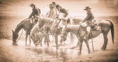 Tin Type (braniffelectra) Tags: horses cowboys texas palestine oldphoto northtexas