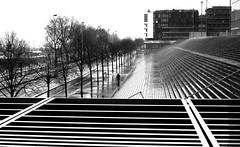 Under the shower (pascalcolin1) Tags: blackandwhite reflection rain noiretblanc pluie bnf reflets streetview paris13 photoderue urbanarte photopascalcolin