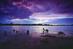 High water (M a u r i c e) Tags: sky water netherlands sunrise river horizon maas limburg efs1022mm