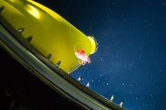 Strange jellyfish (ianc7777) Tags: leica sony submarine stanley karl roatan exploration institue deepsea idabel trielmar a7rii