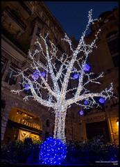 (Dorron) Tags: christmas tree arbol lights luces nikon san sebastian country navidades basque urko vasco euskadi donostia pais zuhaitza guipuzcoa gabonak gipuzkoa euskal herria argiak 2015 eguberriak sagasti dorronsoro dorron d3s