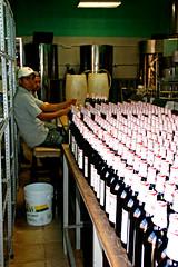 Factory workers, La Vencedora vanilla factory, San Luis Potosi (davidvictor513) Tags: mexico unescoworldheritagesite sanluispotosi