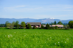 Gorgeous day on the farm. Arlington, WA. April 2016. (poopoorama) Tags: arlington rural landscape washington unitedstates farm pacificnorthwest forterra dannyngan nikond600 nikoncorporation andrewshay dannynganphotography