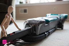20160420-A34A2432 (DoreanB) Tags: life bob housework chores vacuuming