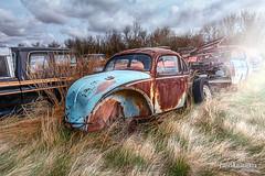 A Bugs Life (Pat Kavanagh) Tags: canada abandoned field car vw volkswagen volvo beetle alberta rusted rusting homestead vwbeetle farmersfield taber