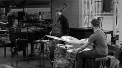 P1310789 (Imagine Bill) Tags: birminghamjazz davidferris stuartbarker jazzlines jazzlinestrio ricyarborough