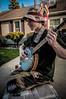 tortoise with a banjo (TortoiseLifeDesigns) Tags: bluegrass folk bajo pickin