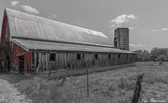 Selective Color... (Ken Thomann Photography) Tags: trees red bw color texture nature monochrome clouds barn canon fence buildings mississippi landscape fun concrete tin mono rust quiet cattle outdoor earlymorning wideangle silo explore starkville tranquil oldbuilding oldwood selective sideoftheroad reallyrightstuff canon6d canon1635mmf28lii outinnature