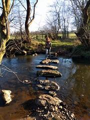 Crimple Beck Stepping Stones (deadmanjones) Tags: steppingstones zjlb crimplebeck rivercrimple