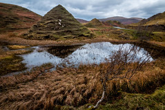 Magical wonderland (cheese and pickle) Tags: uk winter sky lake mountains tree green nature water mystery landscape scotland leaf ancient nikon isleofskye natural britain climbing scottishhighlands