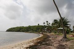 Antilles 2012 121