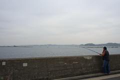 20160424-DSC_8911.jpg (d3_plus) Tags: sea sky fish beach nature japan nikon scenery diving daily snorkeling  28105mmf3545d nikkor  kanagawa hayama     dailyphoto  apnea  thesedays  28105    28105mm skindiving  zoomlense     28105mmf3545 d700 281053545 nikond700 aiafzoomnikkor28105mmf3545d 28105mmf3545af   aiafnikkor28105mmf3545d