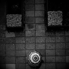 mr umbrella (rocami19) Tags: leica dlux5
