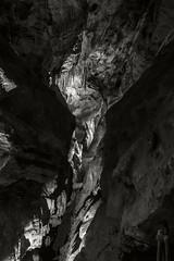 Luray Caverns 007 (frntprchprss) Tags: blackandwhite cave stalagmite stalagtite caverns luray jamesgehrt