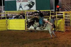 Ujeżdżanie byków | Bullriding