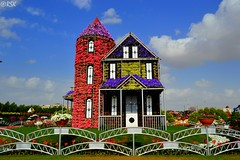 Colourful house (RSK.2016) Tags: park travel flowers sunlight house colors beautiful architecture wonderful garden colorful dubai day colours bright outdoor uae engineering places bluesky exhibition explore experience colourful barricade dubaimiraclegarden