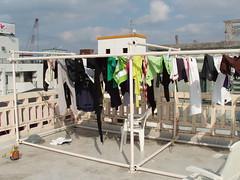 Clotheslines (CSUMB-Japan Exchange) Tags: japan okinawa clotheslines naha csumb exchange wlc clothesdrying buildingtop csumbjapan csumbintlexchenvironment boyd6956